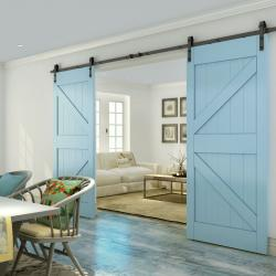 View Photo: Sliding Barn Door D05 / Hardware Kit BB02