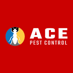 Visit Profile: Ace Pest Control