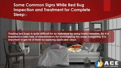 Watch Video: How Bed Bug Can Give You Sleepless Nights?