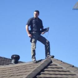 View Photo: Inspecting Roof Exterior