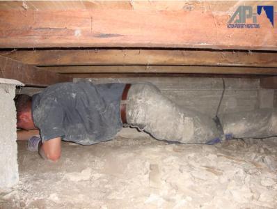 View Photo: Inspecting Underfloor
