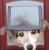 Visit Profile: Affordable Pet Doors Melbourne