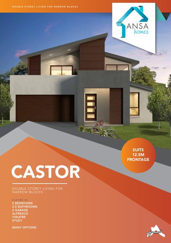 Browse Brochure: CASTOR