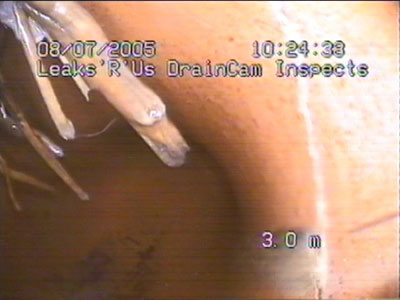 View Photo: Drain Cam Inspects