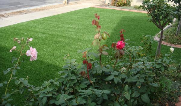 View Photo: Artificial Lawn