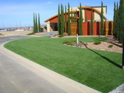 View Photo: Instant Lawn