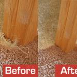 How To Treat Burn Marks On The Carpet?