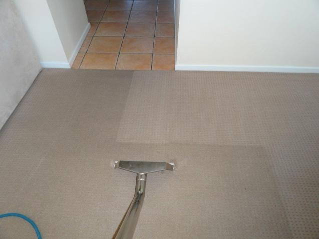Read Article: Some Important Things You Should Know About Carpet Steam Cleaning