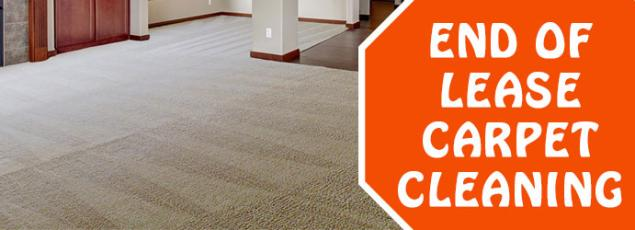 The Best way to keep your Carpet Germfree