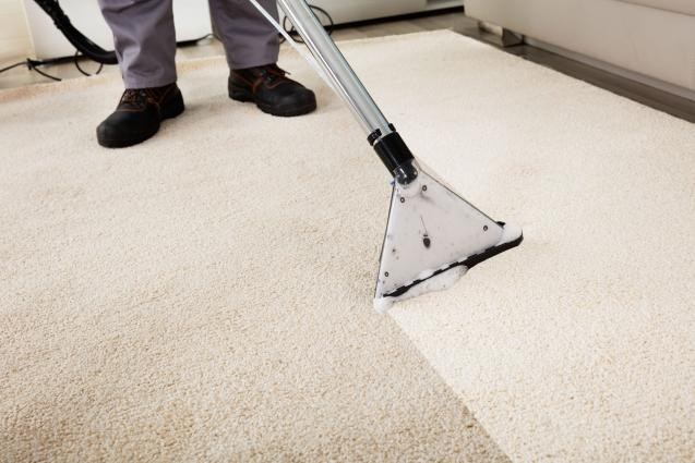 Read Article: Why You Need to Adopt Different Processes for Different Types of Carpets