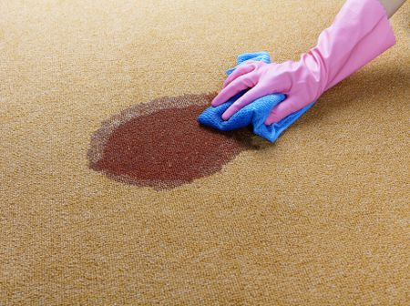 Read Article: 3 Reasons Your Carpet Stain May Become Permanent