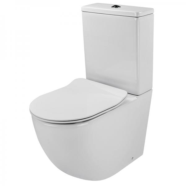 View Photo: DANZA Wall Facing Rimless Flushing Toilet Suite