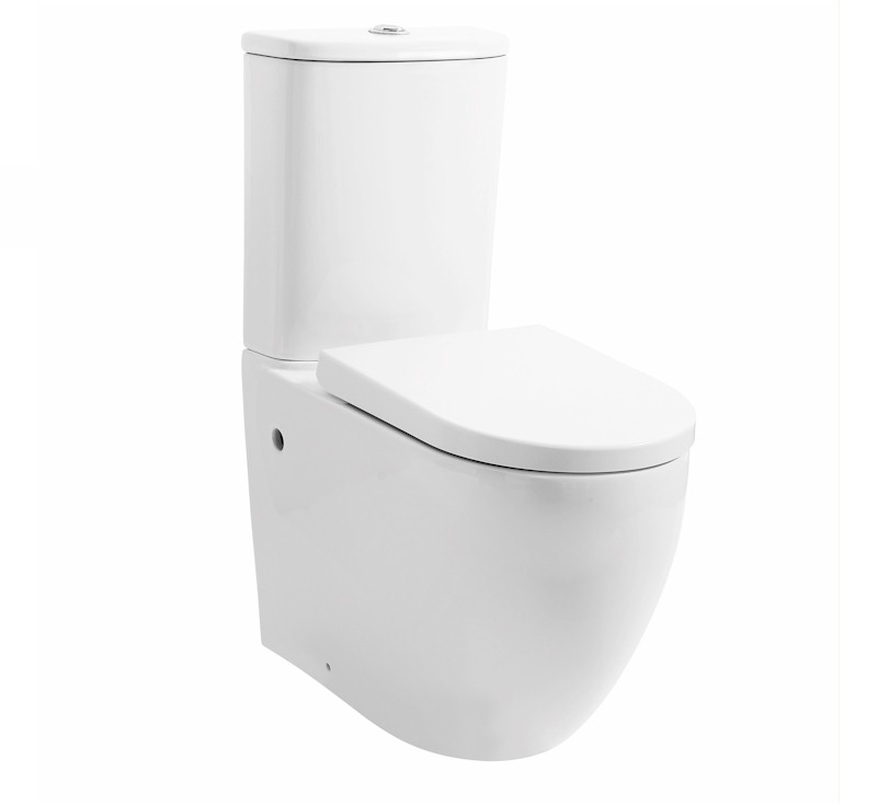 View Photo: Donna Rimless Wall Faced Toilet Suite - Extra Height