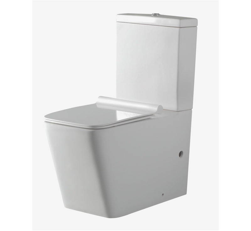 Varese Rimless Nanoglaze Back to Wall Toilet - Geberit