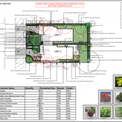 View Photo: Landscape Plan for DA
