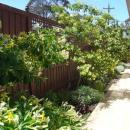 View Photo: Greywater Systems Melbourne