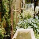 View Photo: Water Feature and Herb Garden combined