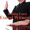 Why is expert witness most important to your dispute?