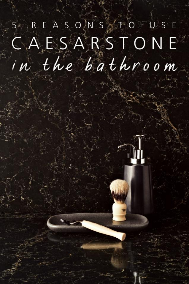 Read Article:  5 Reasons to Use Caesarstone in the Bathroom