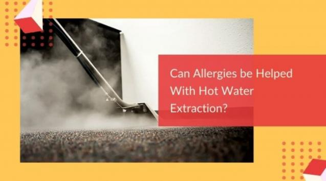 Can Allergies be Helped With Hot Water Extraction?