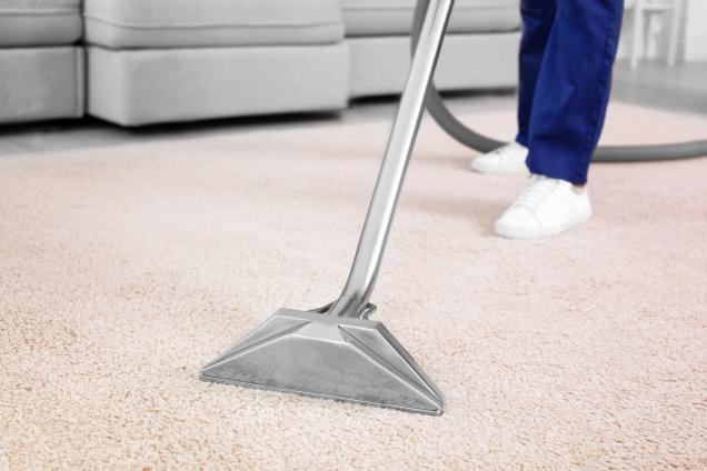 Read Article: How to Keep Your Carpet Clean and Grime Free