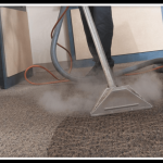 Importance of Cleaning The Carpets