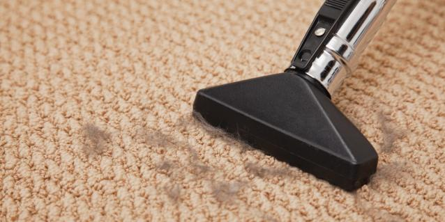Whether to Rent Carpet Cleaning Equipment Right.