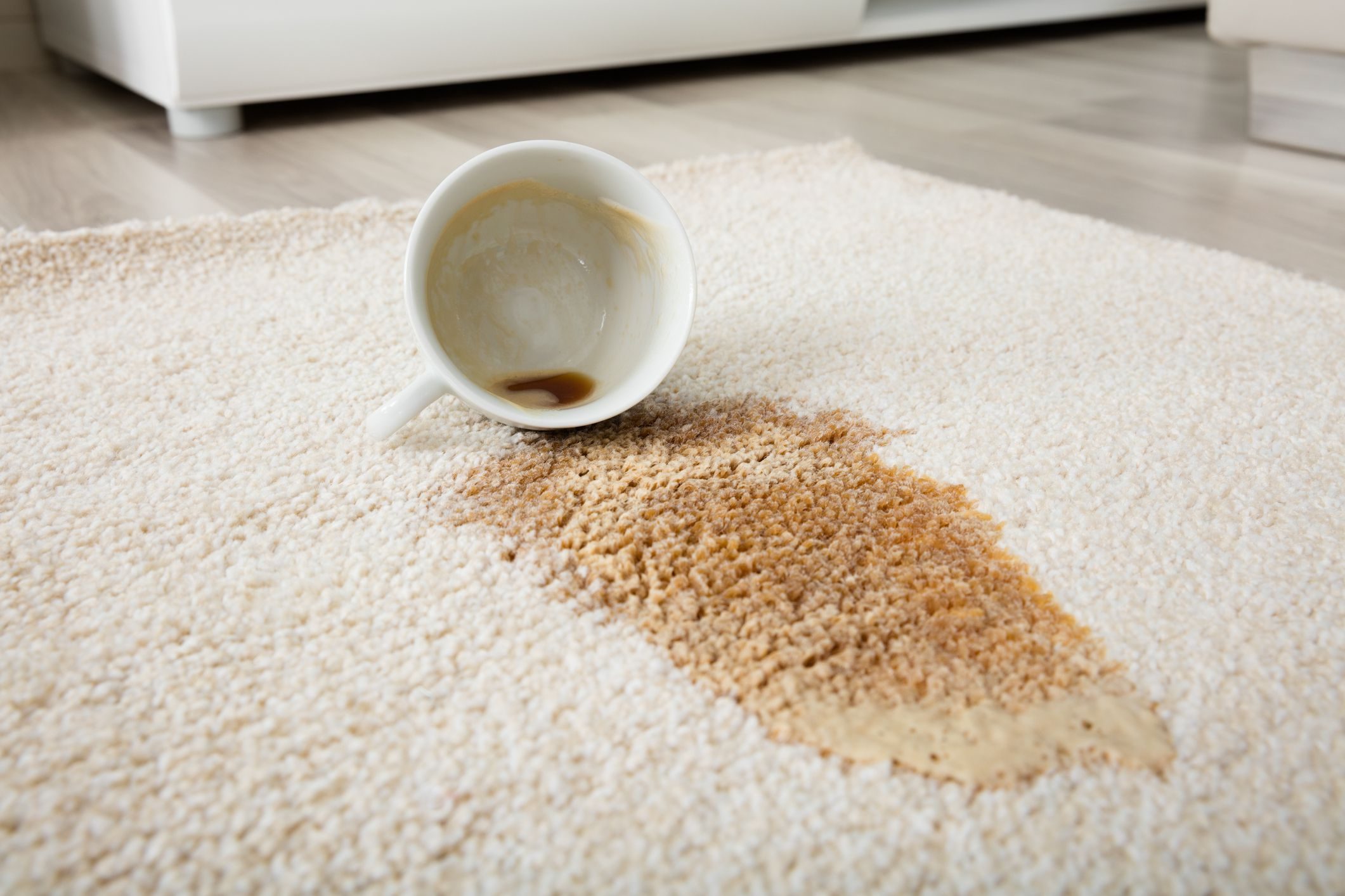 Read Article: Getting Rid Off Coffee Stains From the Carpet