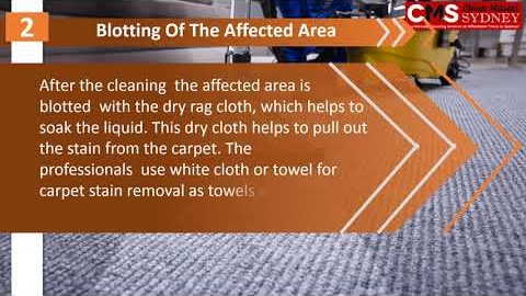 Watch Video: Steps How To Remove Food Stains From Carpets