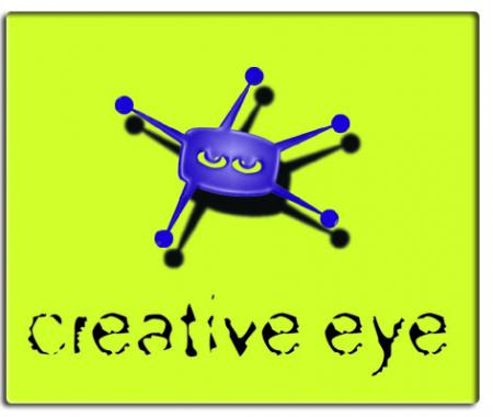 creative eye building solutions