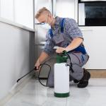 Read Article: Dependable Pest Control - Engadine