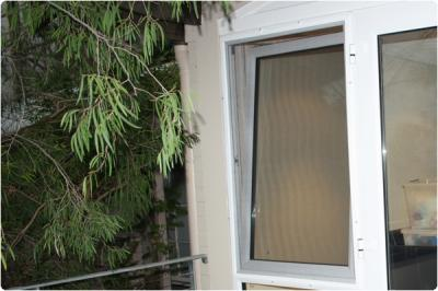 View Photo: Flyscreen on a double glazed window