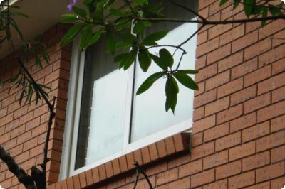 View Photo: Sliding upvc window double glazed