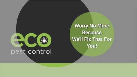 Watch Video: Brisbane Northside - Eco Pest Control