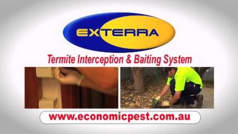 Watch Video: Termite Control - Economic Pest Control