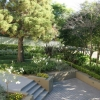 Beautiful and sustainable gardens