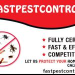 Experts Warns By Pest Encounters During This Thanks Giving Season with Fast Pest Control Australia