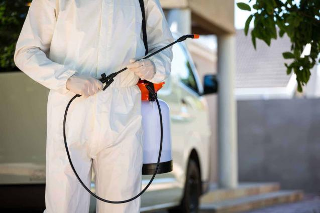 Read Article: What are The Top Benefits of Professional Pest Control?