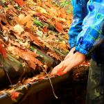 Tips for Cleaning Out Your Gutters
