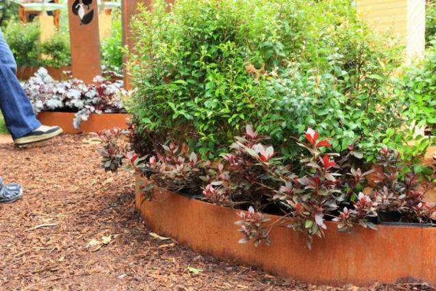 View Photo: Corten Round Garden Beds