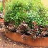 Corten Round Garden Beds