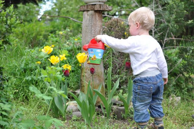 Read Article: How To Get Your Kids Involved In The Garden