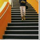 View Photo: Anti-Slip & Non Slip Floor Treatments for Stairs