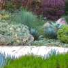 Questions to consider if you're thinking of getting landscaping done