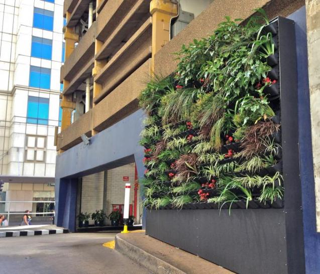 View Photo: Commercial Green Wall