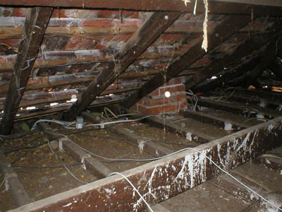 Internal Home Inspection
