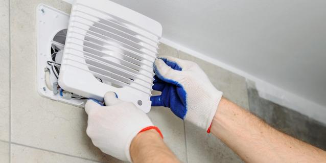 Read Article: Preventing Mould Once Winter Hits