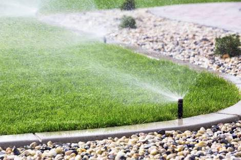 Outdoor Water Saving Tips