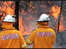 Read Article: Bushfire Zone Standard Building Code