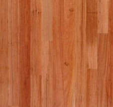 View Photo: Red Species - Red Mahogany